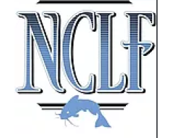 The Nick Carter Law Firm logo