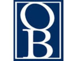 OSIPOV BIGELMAN, PC logo