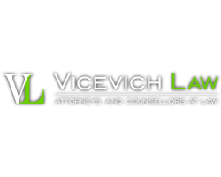 David L. Vicevich P.C. logo