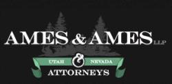 Tera K Andrews Ames -  Ames & Ames, LLP logo