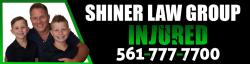 David I. Shiner logo